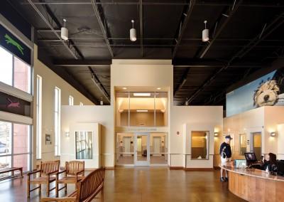 Reception area and spacious dog dorms