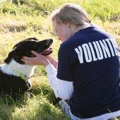 volunteershirt