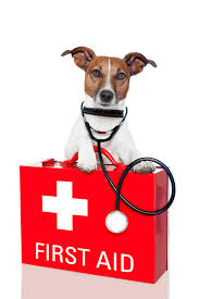 Pet CPR & First Aid Class @ Peninsula Humane Society & SPCA | Burlingame | California | United States